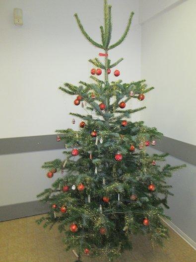 Kaufland weihnachtsbaum